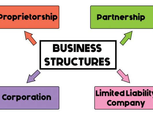 legal structure chart
